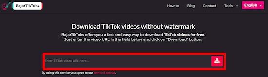 تنزيل فيديوهات تيك توك
